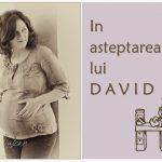 In asteptarea lui David {fotografie de maternitate}