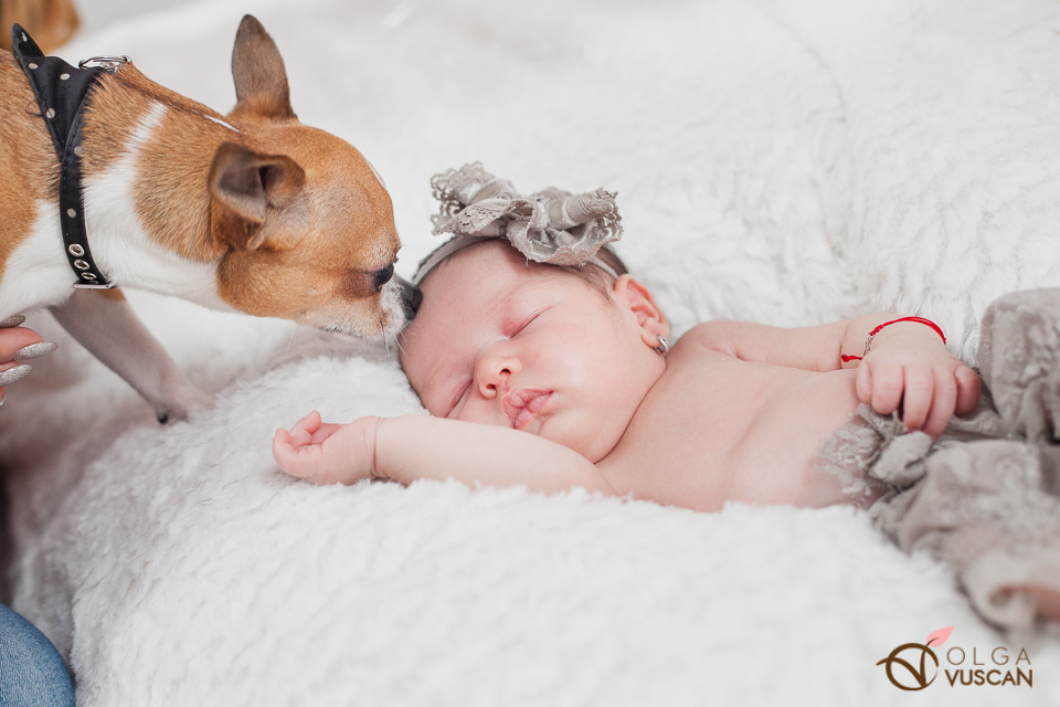 Ebony_newborn session_Olga Vuscan 049