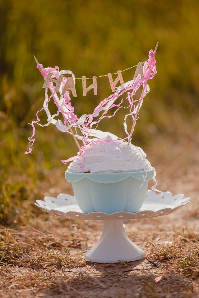 smash the cake_1 an_fotograf Olga Vuscan