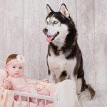 fotografii bebe la 6 luni cu cainele familiei, fotograf Olga Vuscan