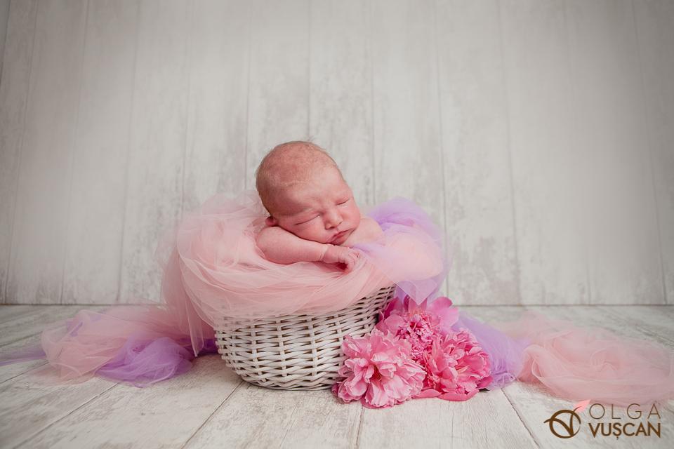 poze de nou-nascut_fotograf Olga Vuscan